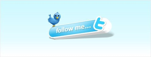 Twitter Bird Follow me button