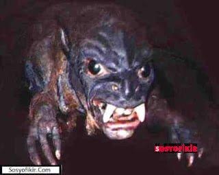 Dünyanın En Korkunç En Garip Yaratıkları 1