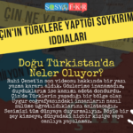 dogu turkistan ve cin